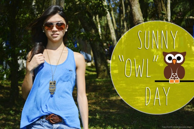 sunny_owl_day