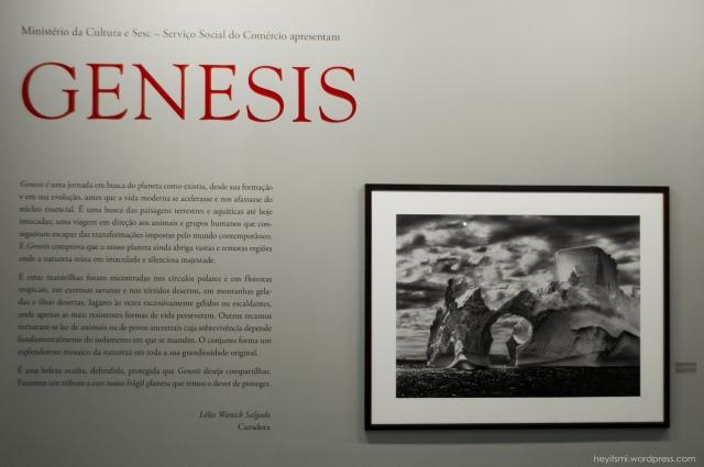 genesis-sebastiao-salgado-heyitsmiblog